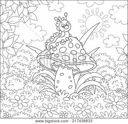 Funny Caterpillar Crawling On A Big Amanita On A Glade Of A Summer Forest, Black And White Vector Il