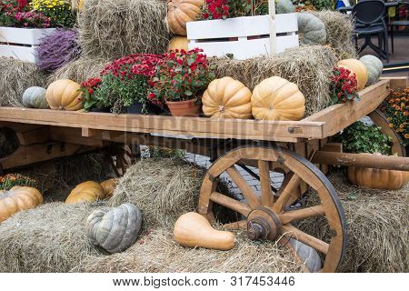 Orange Pumpkins On Hay, Flowers In Pots, Decorative Cartwheel. Autumn Street Decoration Background.