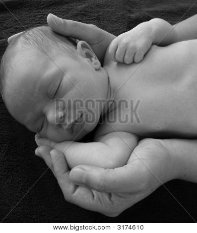 Baby In Hands Black And White