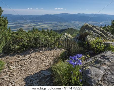 View On Valley Of Liptov Valley From Hiking Trail On Baranec With Yellow Trail Sign And Blooming Blu