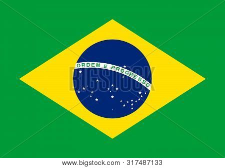Flag Of Brazil Vector Illustration Worlds Flags Collection