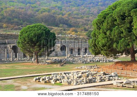 The Commercial Agora In The Ancient City Ruins Of Ephesus, Turkey Near Selcuk With Wooded Green Tree