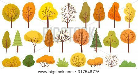 Yellow Autumn Trees. Colorful Garden Tree, Autumnal Garden Bush And Fall Season Tree Leaves. Forest