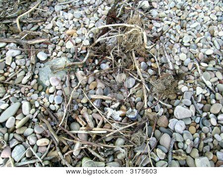 Beach Pebbles And Flotsam