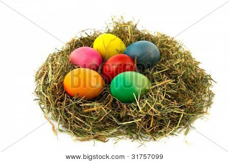 colorful straw nest easter eggs isolated over white background