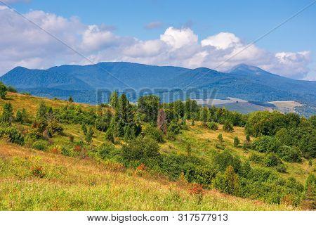 Wonderful Autumn Mountain Landscape. Pikui Peak Of Watershed Ridge Beneath Clouds. Trees On Grassy R