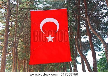 The Red Flag Of Turkey With A White Crescent And Star Hanging Vertically With A Rope Between Trees A