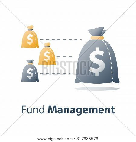 Investment Fund Structure, Financial Diversification, Capital Consolidation, Different Revenue, Weal