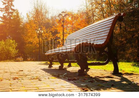 Fall October landscape. Bench at the autumn park under colorful fall deciduous trees lit by bright sunlight - sunny fall view
