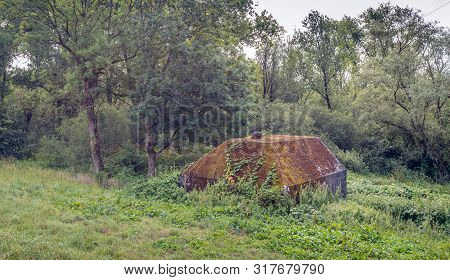 Overgrown Dutch Group Shelter, Part Of The New Dutch Waterline, Built In 1939. This Concrete Bunker