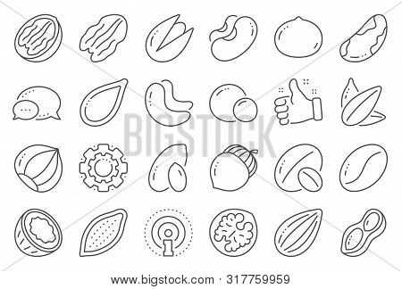 Nuts And Seeds Line Icons. Hazelnut, Almond Nut And Peanut. Sunflower And Pumpkin Seeds, Brazil Nut,