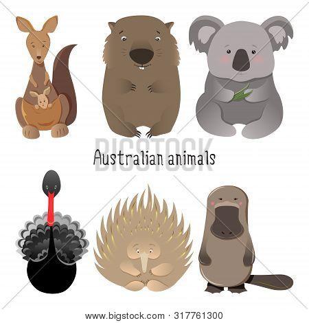 Australian Native Animals Cartoon Illustration Set, Collection