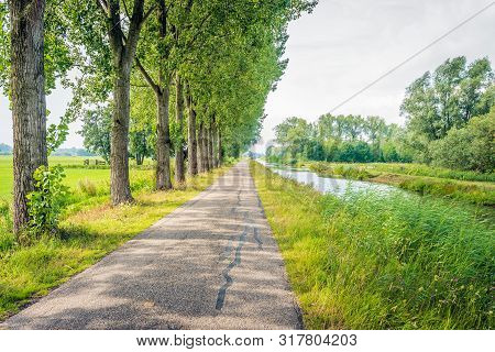Seemingly Endless Country Road Along A Row Of Tall Trees And A Narrow River In The Netherlands. In T