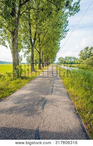 Vertical Image Of A Seemingly Endless Country Road Along A Row Of Tall Trees And A Narrow River In T