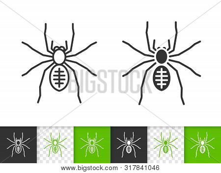Spider Black Linear And Silhouette Icons. Thin Line Sign Of Insect. Tarantula Outline Pictogram Isol
