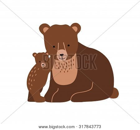 Brown Bear And Cub Isolated On White Background. Cute Lovely Family Of Wild Forest Carnivorous Anima