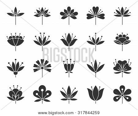Stylized Flower Silhouette Icons Set. Sign Kit Of Spring Plant. Floral Graphic Pictograms Of Chamomi