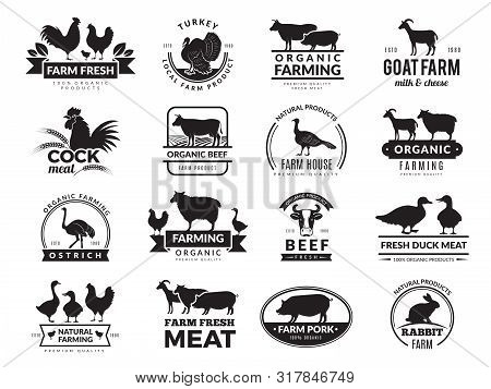 Farm Animals. Business Logo With Domestic Animals Cow Chicken Goat Healthy Food Symbols Vector Farm