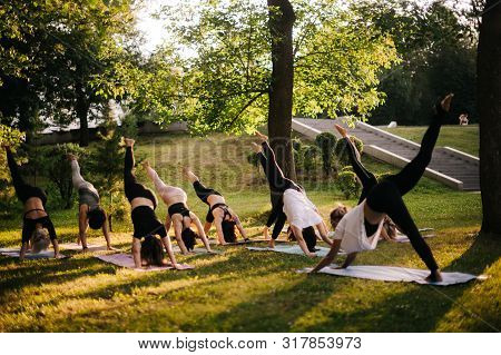 Group Of Flexible Women Are Stretching In Three Legged Downward Facing Dog Exercise, Adho Mukha Svan