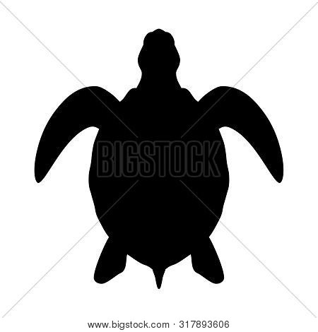 Sea turtle graphic icon. Sea turtle black sign isolated on white background. Vector illustration