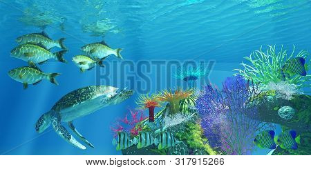 Green Sea Turtle 3d Illustration - A Green Sea Turtle Dives For Deeper Water As Chelmon Butterflyfis