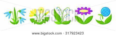 Flower Icon Set. Organic Sign. Spring Card Design. Seedling Kit. Sapling Simple Pictogram. Green Gra
