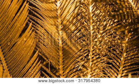 Close Up Of Exotic Tropical Leaves Colored In Gold Colour