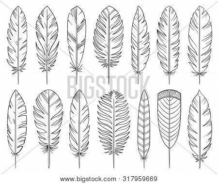 Feather Hand Drawn Line Style Set. Quill Collection Of Simple Outline Doodle Signs. Tribal Linear Sy