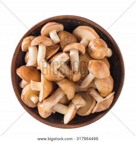 Fresh Forest Mushrooms In Clay Cup Isolated On White Background. The View From The Top. Natural Vege