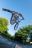 Bmx stunt performed at the top of a jump ramp on a skatepark. poster