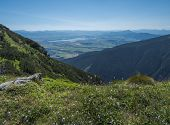view on valley of Liptovsky Mikulas with liptovska mara lake from meadow with blooming pink Plantago flowers, Western Tatra mountains or Rohace. Summer blue sky background poster