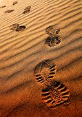 Foot prints on the desert sand poster
