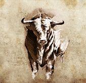 Sketch of tattoo art, spanish bull, dangerous bull with beaked horns poster