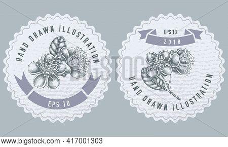 Monochrome Labels Design With Illustration Of Feijoa Flowers Stock Illustration