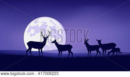 Herd Of Wild Deer And Baby Fawn Grazing At Night Meadow With Full Moon In Sky - Wildlife Vector Scen