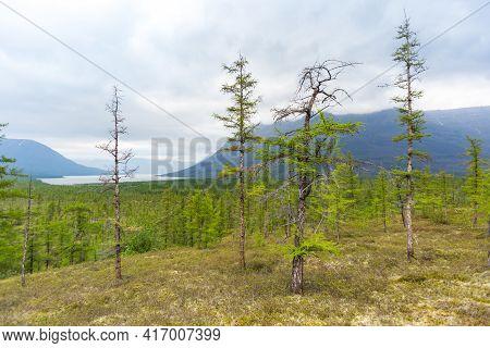 Polar Day On Putorana Plateau, Taimyr. Russia