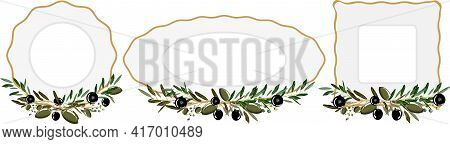 Plates With Olive Branches. Round, Ellipse, Square. Vector Templates.