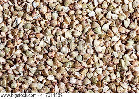 Green Buckwheat. Gluten-free And Healthy Food. Grain Groat Texture.