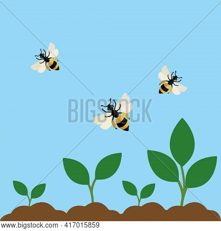 Bees Collect Nectar Flat Design Vector Image