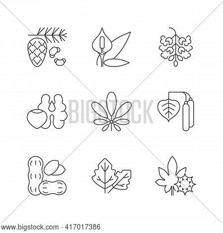 Allergens And Allergy Causes Linear Icons Set. Cedar, Pine Tree Pollen. Peace Lily. Tree Nuts, Peanu