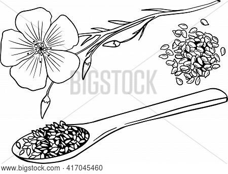 Hand Drawn Flax Seeds Vector Illustration. Use For Cosmetic Products Or Food. Sketch Style Vector Or