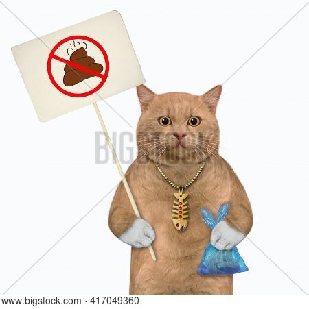 A Reddish Cat Holds A Blue Plastic Bag With Poop And A Prohibition Sign Clean Up After Pets. White B