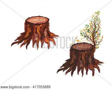 Stump Set. Brown Stumps With Bark, Roots And A Branch With Autumn Leaves. Nature. Ecology. Watercolo