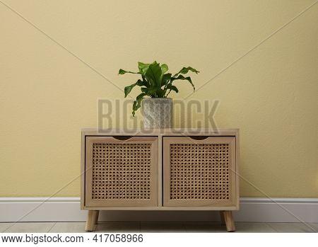 Beautiful Fresh Potted Fern On Wooden Cabinet Near Beige  Wall