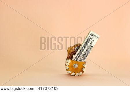 American Five Dollar Bill In Cute Wallet On Pink, Overflowing Piggy Bank, Concept Of Little Money Or