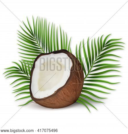 3d Realistic Vector Set Of Coconut, Coconut Halves And Palm Leaves