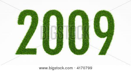 Grass 2009