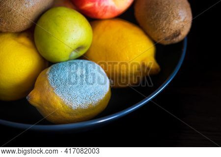 Spoiled Lemon With Light Blue Textured Mold Among Ripe Colorful Whole Fruits: Apples, Kiwi, Edible Y