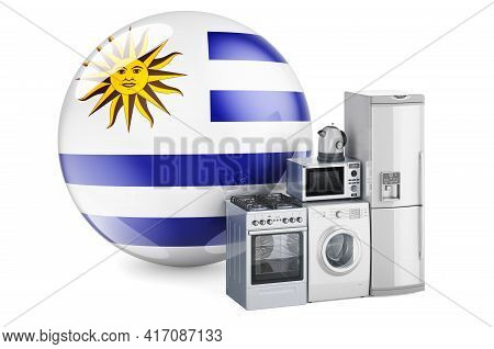Kitchen And Household Appliances With Uruguayan Flag. Production, Shopping And Delivery Of Home Appl