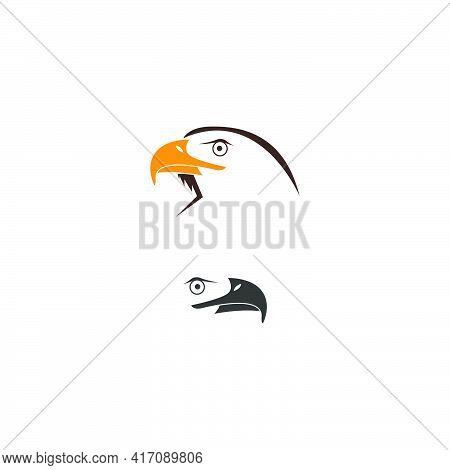 Falcon, Eagle Bird Logo Icon Design Vector Template
